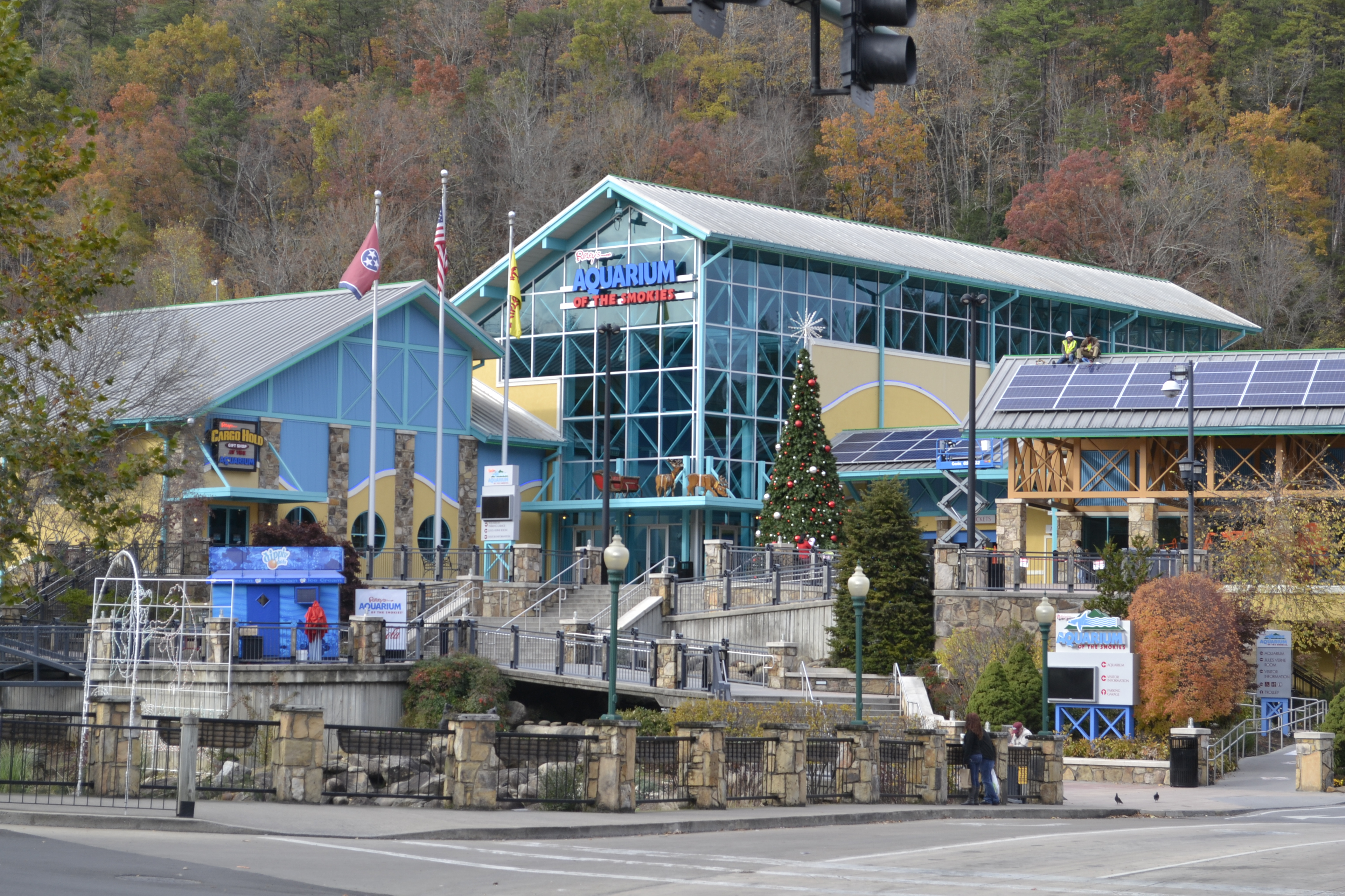 the pin cabins tnbubbletennessee retreat temperatures rent climb away bubble gatlinburg chilly for evening tn featured and lover cabin in rentalsgatlinburg s