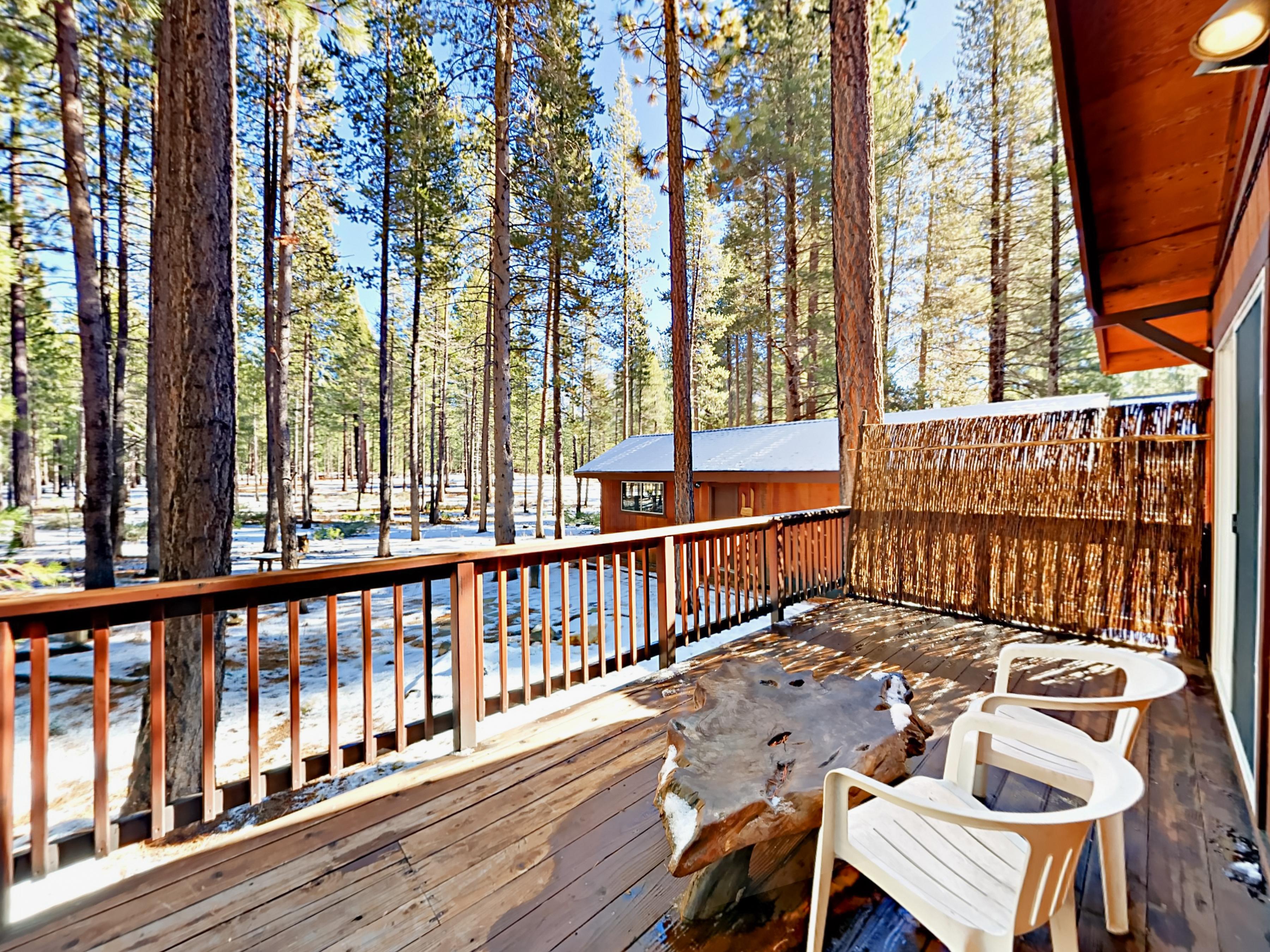 property beach rental original tahoe redawning kings in rentals cabins lake lodge north vacation