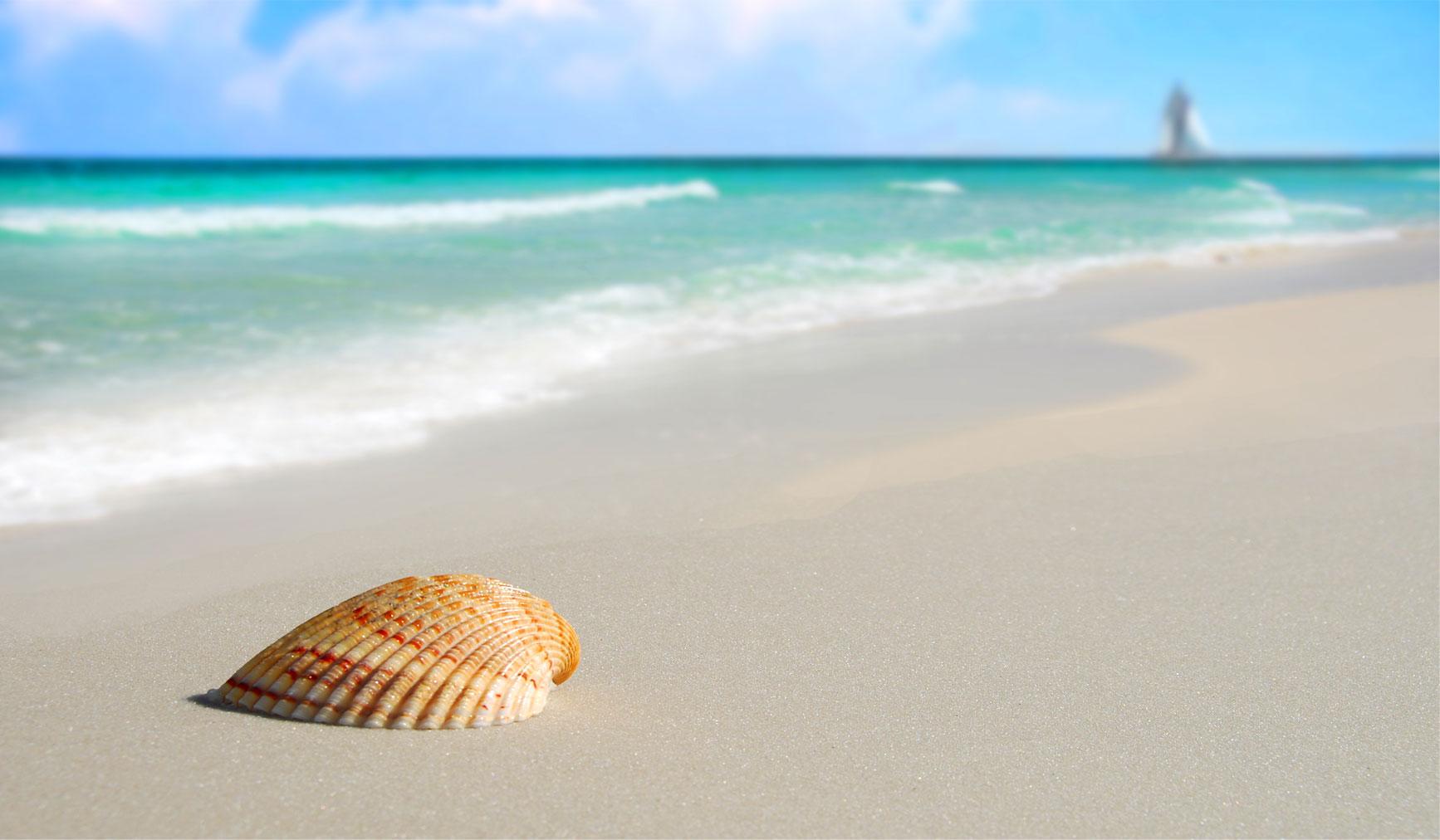 Vacation Rental Property Panama City Beach Fl