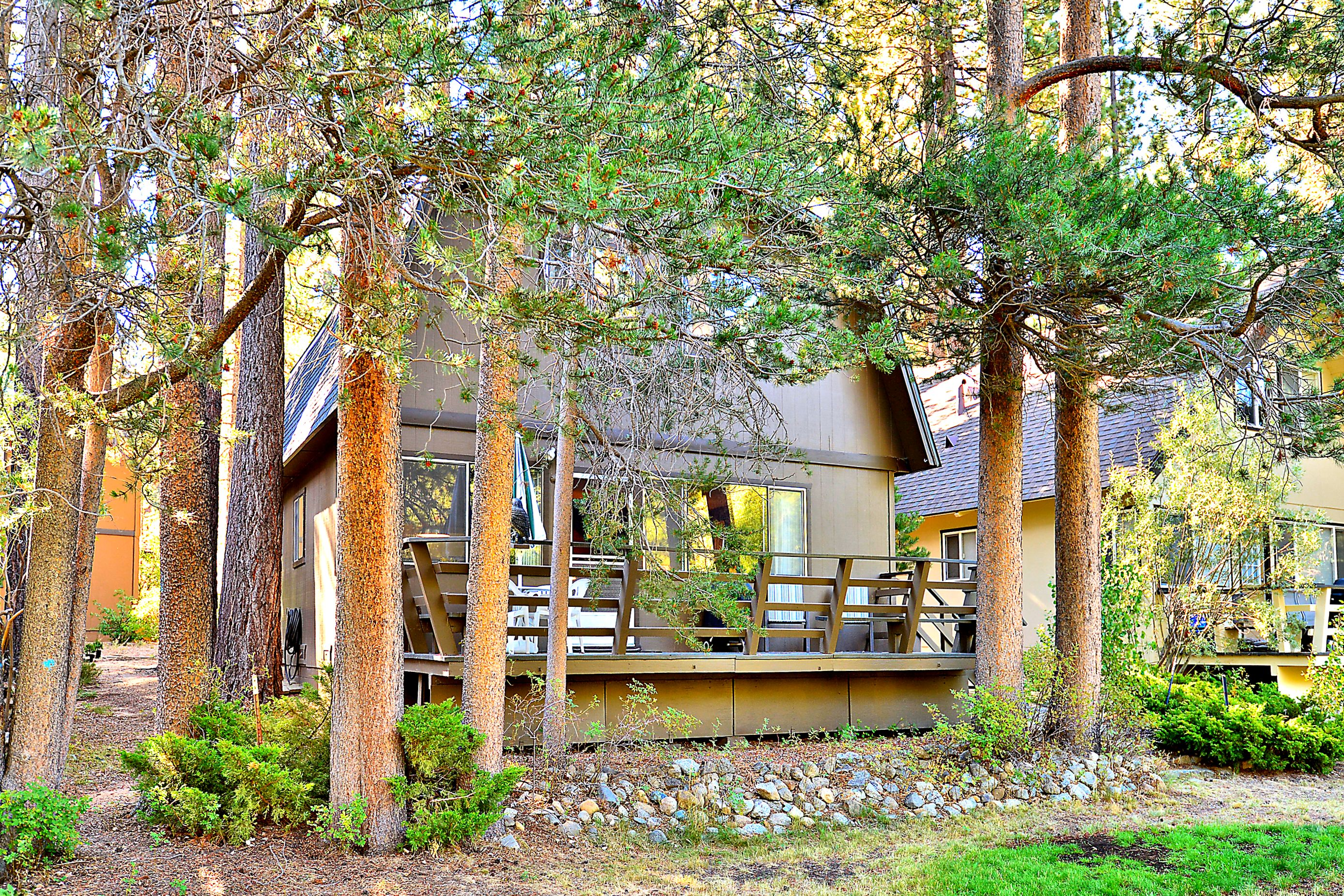 luxury of lake photo vacation cabins holiday in buckingham your july south shore our tahoe sandy cabin spend many blog
