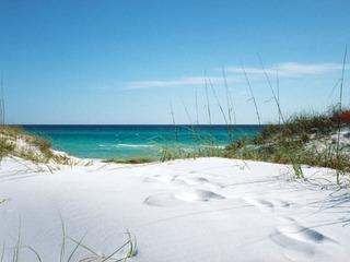 Ocean Ave Retreat