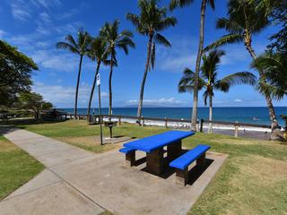 Maui Banyan Q204