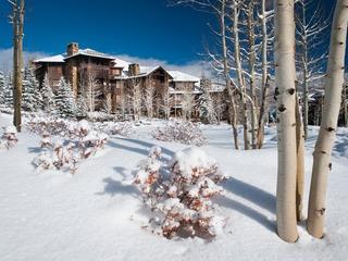 3Br/Ba Alpine Getaway- Steps to Skiing in Bachelor Gulch
