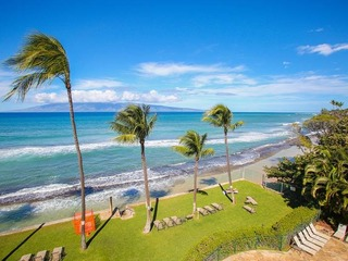 Paki Maui #422 - image