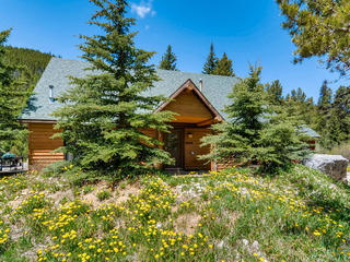 98 Mountain View Trail Cabin