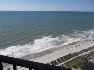 The Palace Resort #2311 Ocean Front (P)