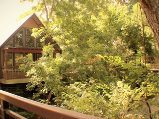 River Rd. Treehouses- Whippoorwill Haus