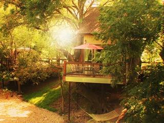 River Rd. Treehouses- Cardinal Casita