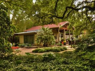Waco Cottage Ca...ear Magnolia