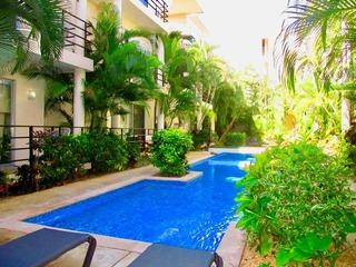 Aqua Terra Palm