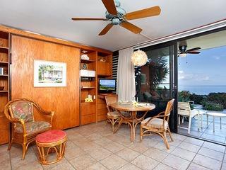 101 Punahoa Condominium