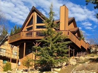 Arctic Lodge - image