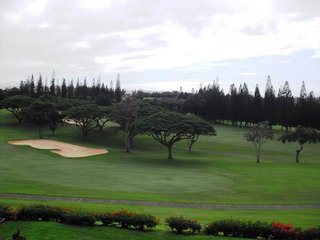Kapalua Golf Villas 12T5