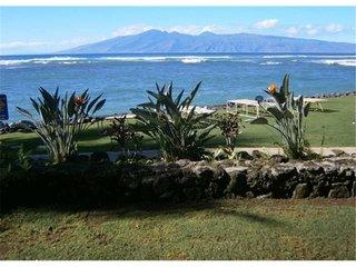Kahana Reef 101 - image