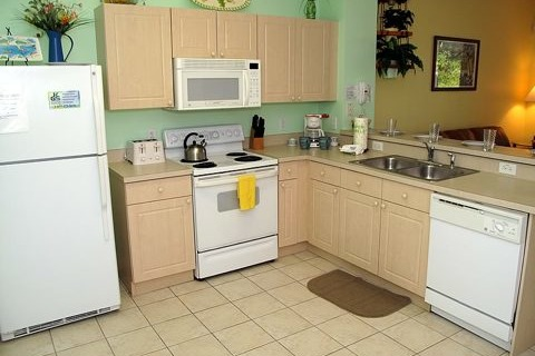 2378 Silver Palm Drive Vacation Rental in Kissimmee - RedAwning