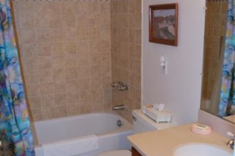 Capri By The Sea-509 Vacation Rental in San Diego - RedAwning