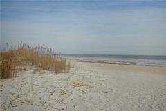 Ocean Dunes Villa #TOD313