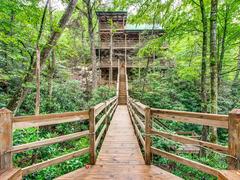 Creek Song Cabin