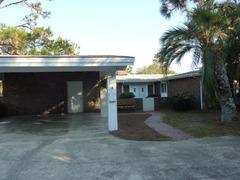 A Beachfront Palm House