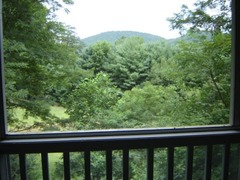 Lily Cabin at Blairsville
