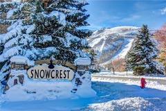 Serenity in Snowcrest