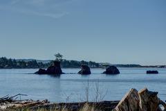 Waters Edge 112