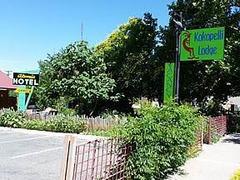 Kokopelli Lodge ~ Unit 5