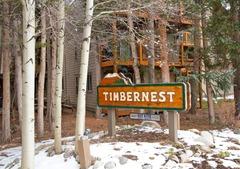Timbernest Super Close Lifts & Town